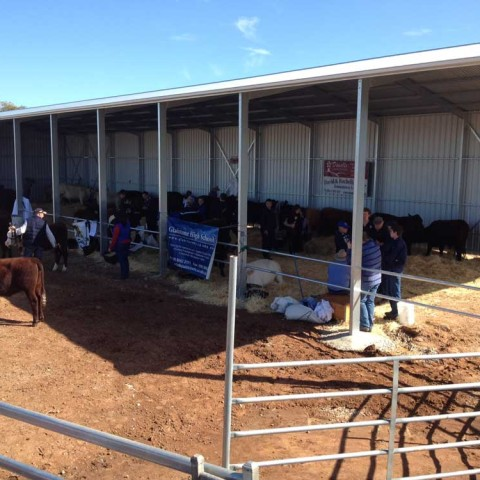 The New Cattle Shed